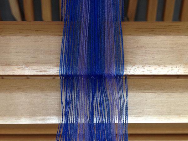 blue warp bout